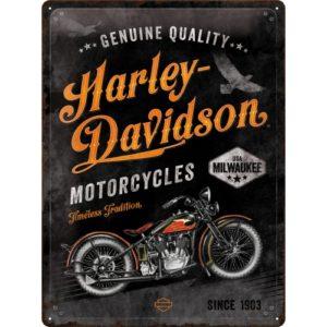 Blechschild 30x40cm Harley-Davidson