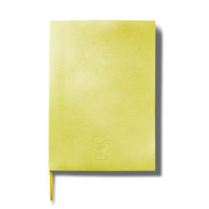 400343_donkey_products_lucky_cat_notebook_yellow
