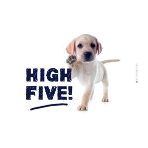 Frühstücksbrettchen High five hund